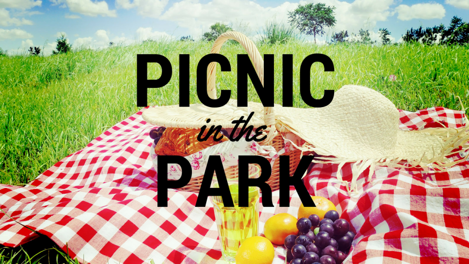 Picnic At The Park PNG