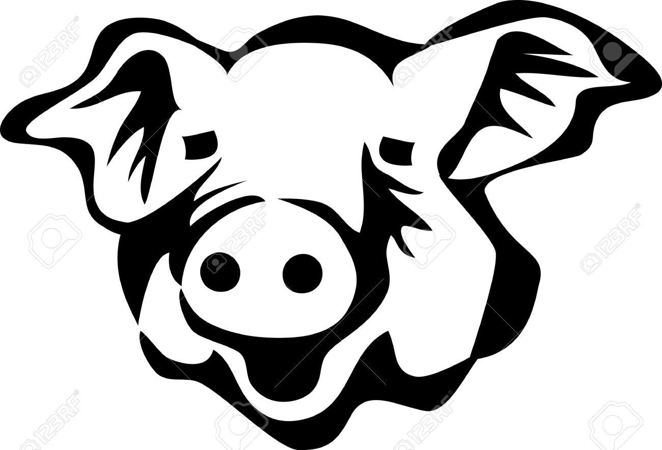 Line Drawing Pig Face : Pig head png black and white transparent