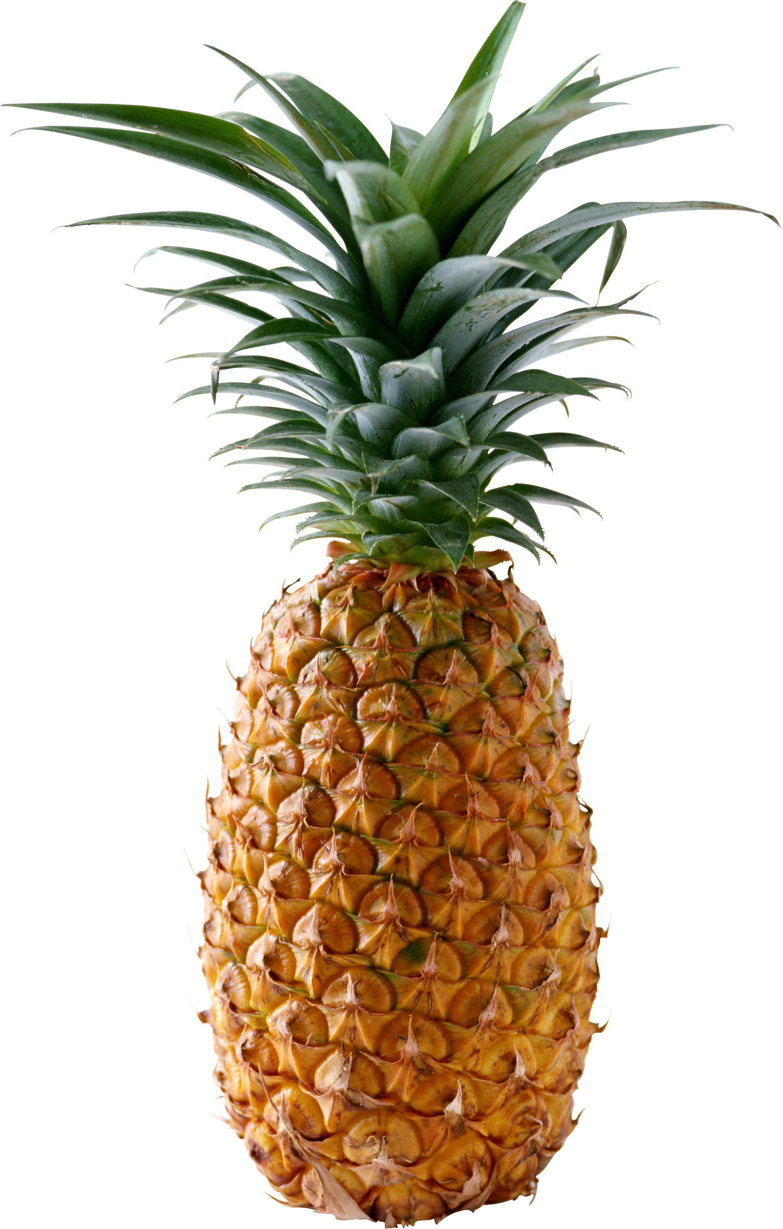 Download - Pineapple HD PNG