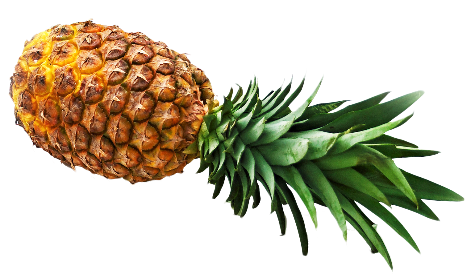 Pineapple HD PNG - 118082