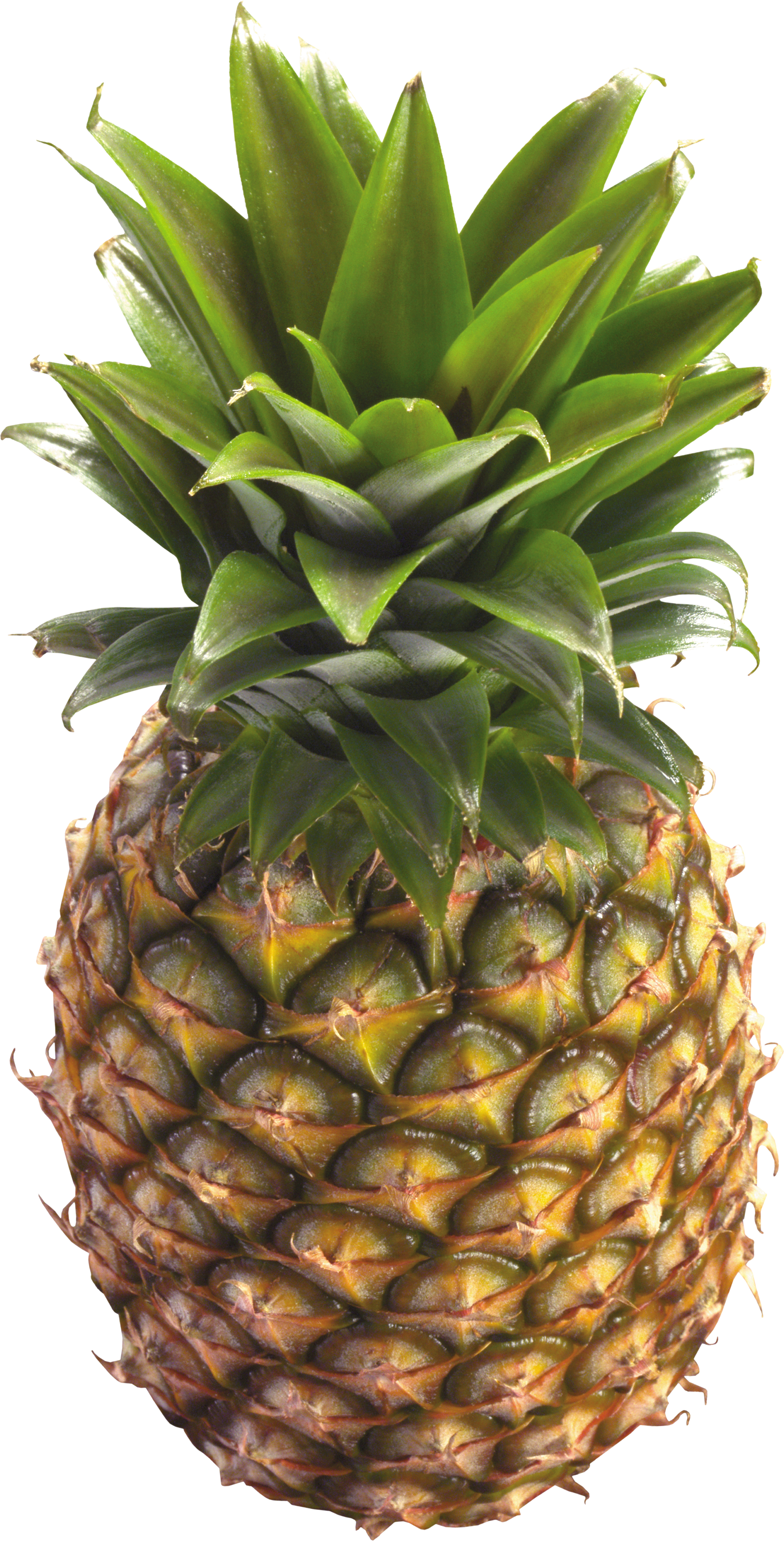 Pineapple HD PNG - 118076