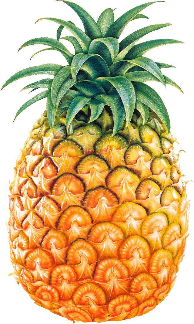 Pineapple HD PNG - 118073
