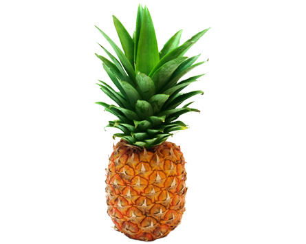 Pineapple HD PNG - 118079