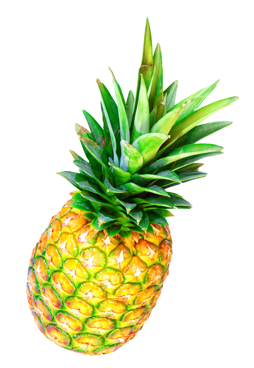 Download Pineapple PNG Image - Pineapple PNG