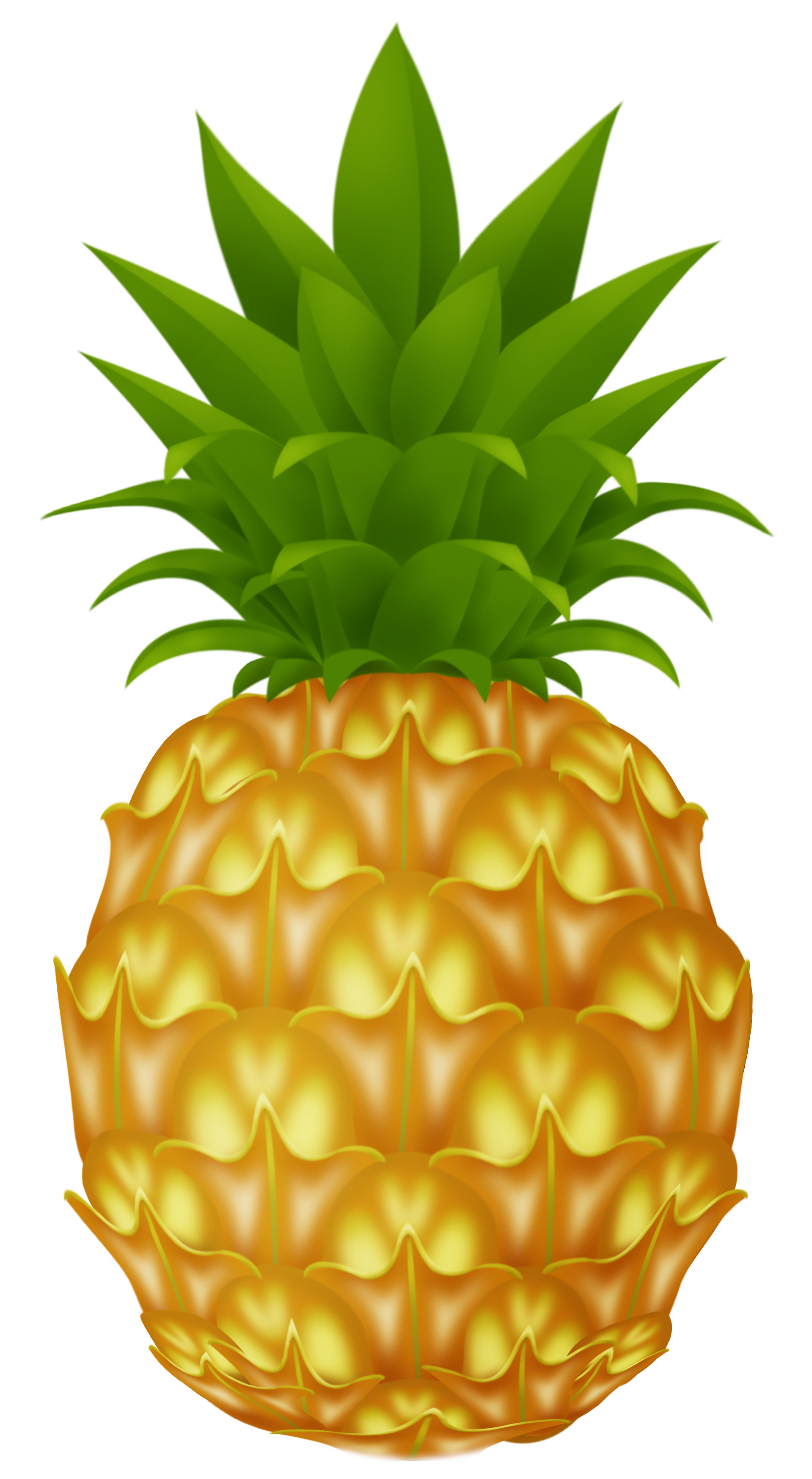 Pineapple PNG - 16595