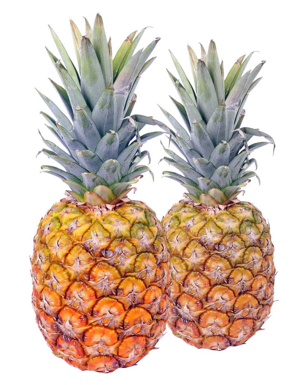 Pineapple PNG - 16590