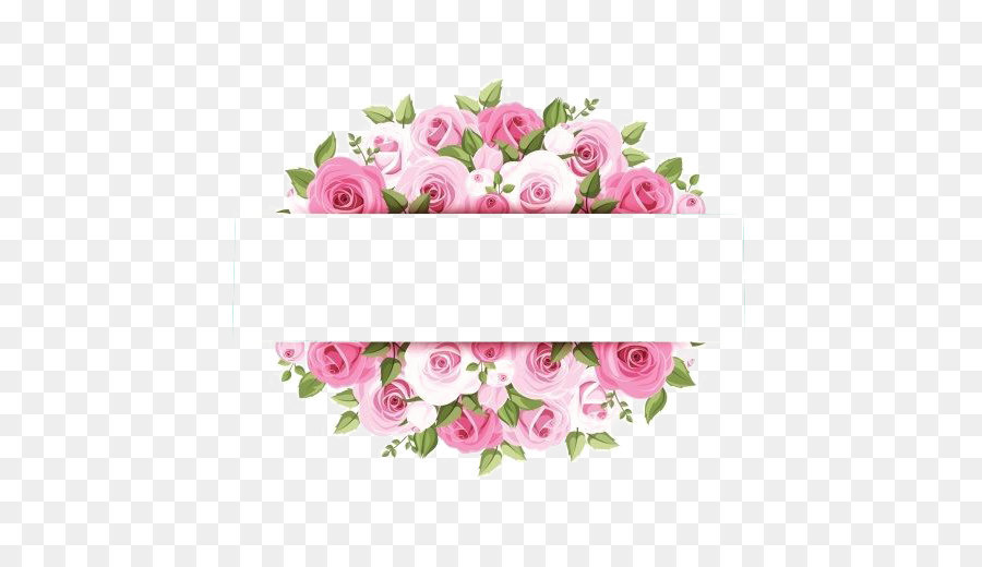 Rose Pink Flower Stock photog
