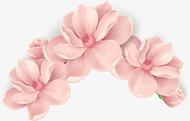 Pink flower png transparent pink flowerg images pluspng vector hand painted pink flowers vector hand painted blooming flowers free png and mightylinksfo
