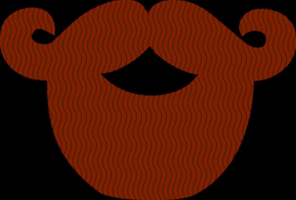Pirate Beard PNG - 156354