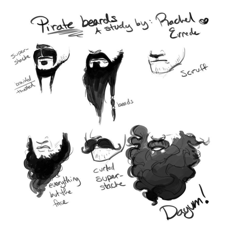 A Study of Pirate Beards by RErrede PlusPng.com  - Pirate Beard PNG