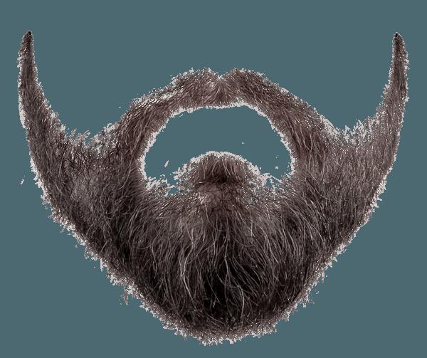 Pirate Beard PNG - 156350