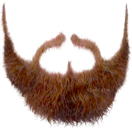 Pirate Beard PNG - 156355