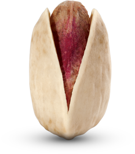 Pistachio PNG - 6667