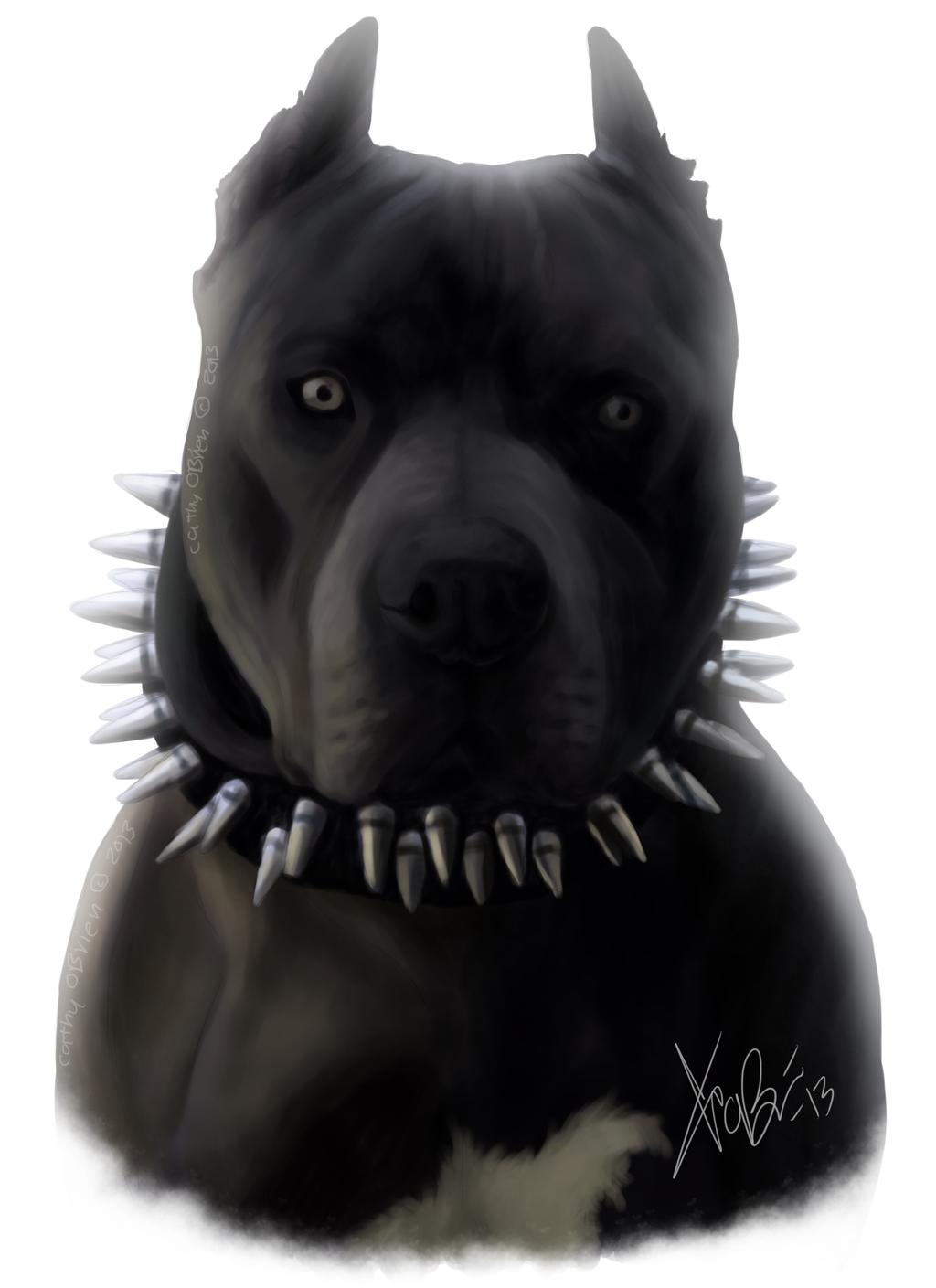 Black Blue Pitbull Portrait By Redeyeddemon D5ws84w Png 1024 1409 Pit Bulls American Terriers