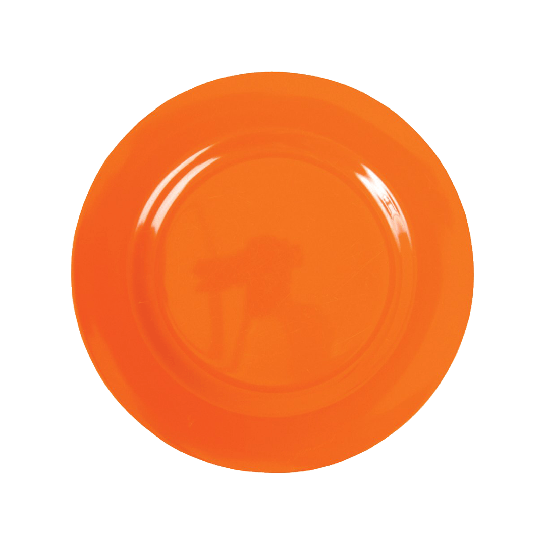 Plate PNG - 3197