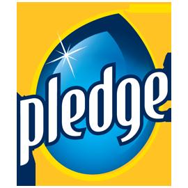 Pledge PNG-PlusPNG.com-270 - Pledge PNG