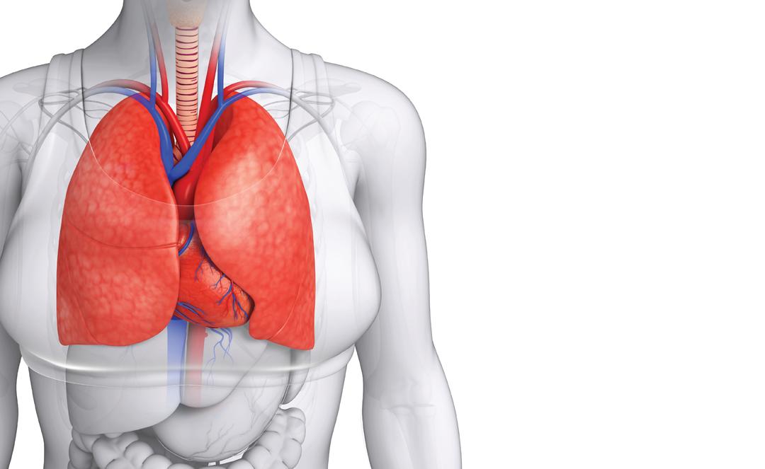Pneumonia u0026 CVD: Making t