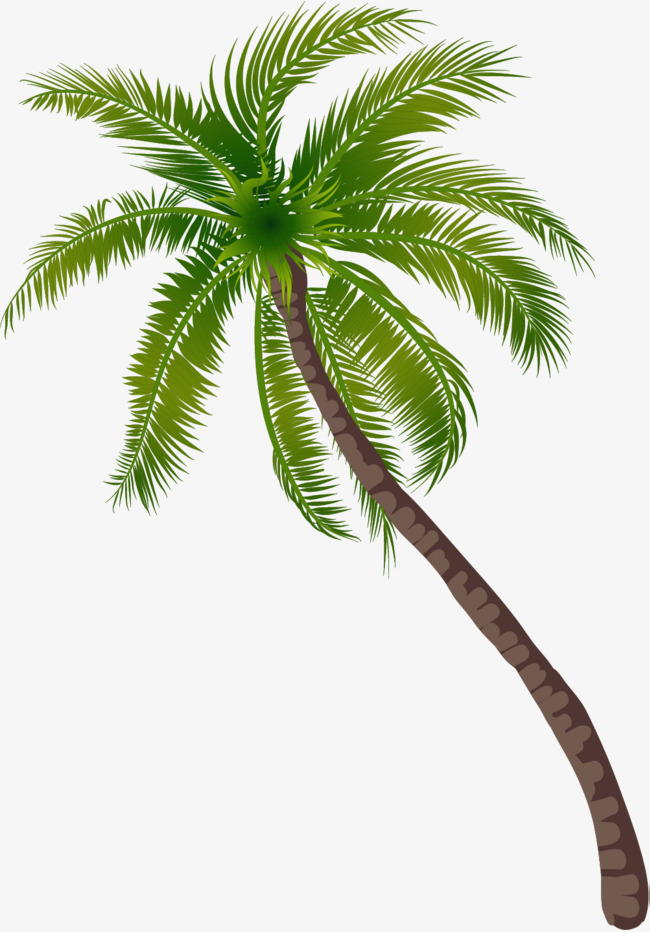beach coconut tree pattern, Green Trees, Seaside, Trees PNG Image and  Clipart - PNG Coconut Tree