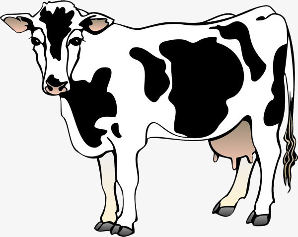 A cow, Hand Painted, Black And White, Material Free PNG Image - PNG Cow Black And White