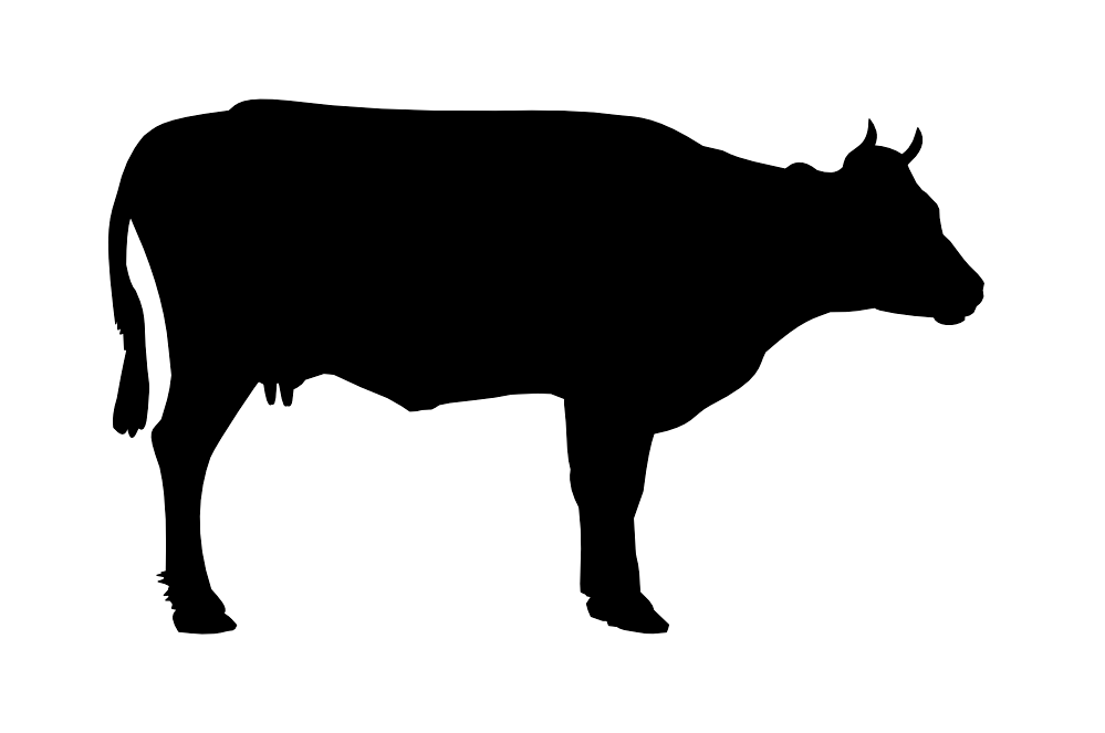 Black Cow Png Siluete PNG Image - PNG Cow Black And White