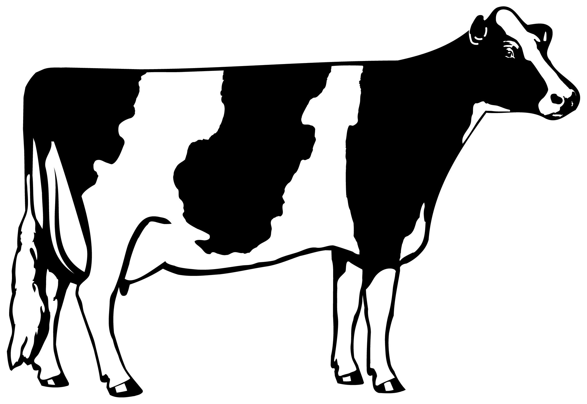 Cow Clip Art Black And White - PNG Cow Black And White