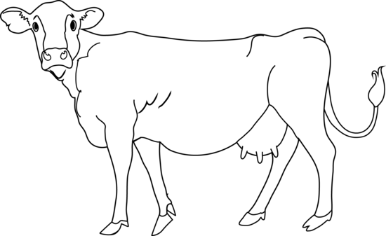 Cow clipart clipart clipartcow - PNG Cow Black And White