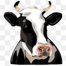 Cow Head, Cartoon, AE, Vector Files PNG and Vector - PNG Cow Head