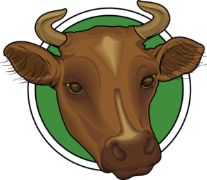 Mounted Cow Head PNG images 300 x 261 px - PNG Cow Head