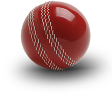 PNG Cricket Ball - 133491