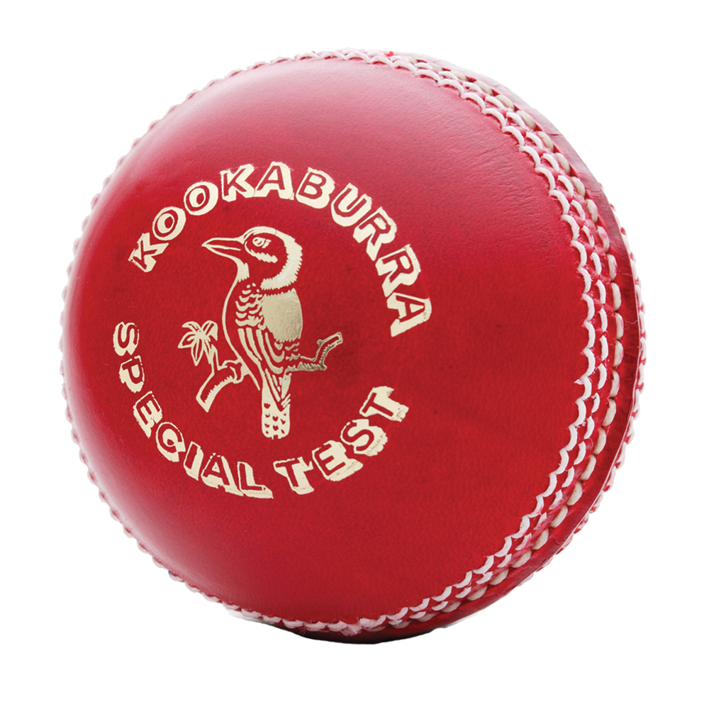 PNG Cricket Ball - 133489
