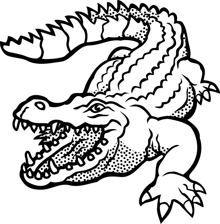 PNG Crocodile Black And White - 133432