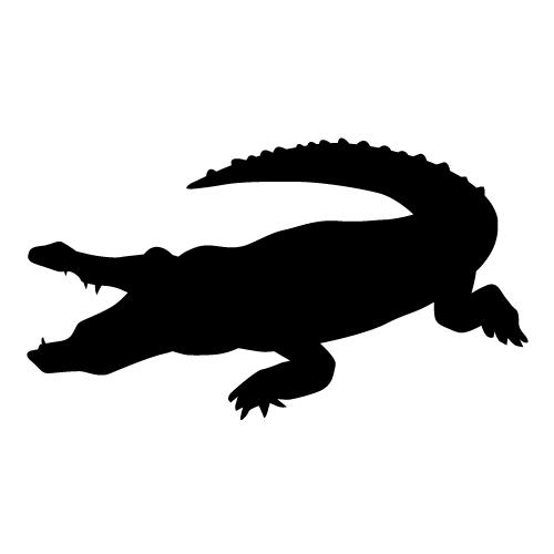 PNG Crocodile Black And White - 133442