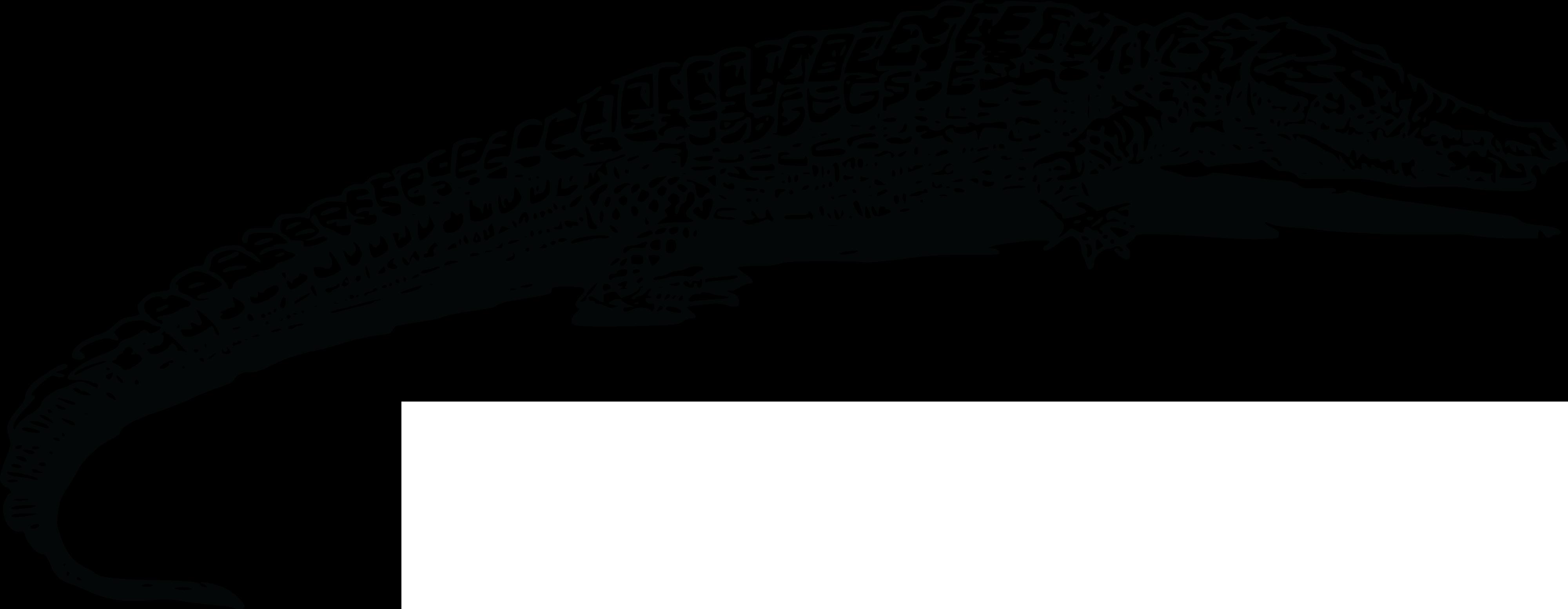 PNG Crocodile Black And White - 133444