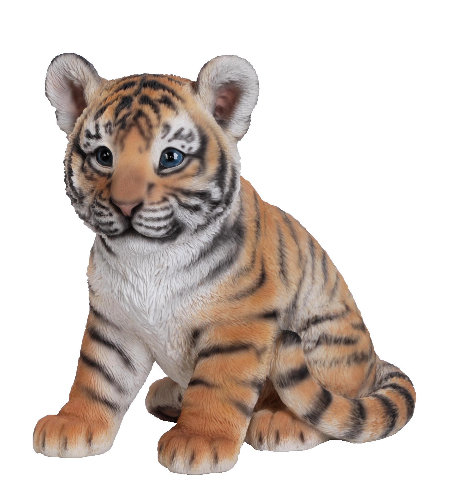 Tiger-Cub-baby-triger-photo - PNG Cub