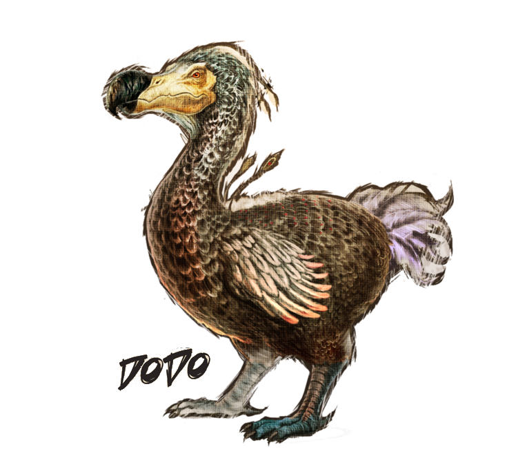 PNG Dodo-PlusPNG.com-751 - PNG Dodo
