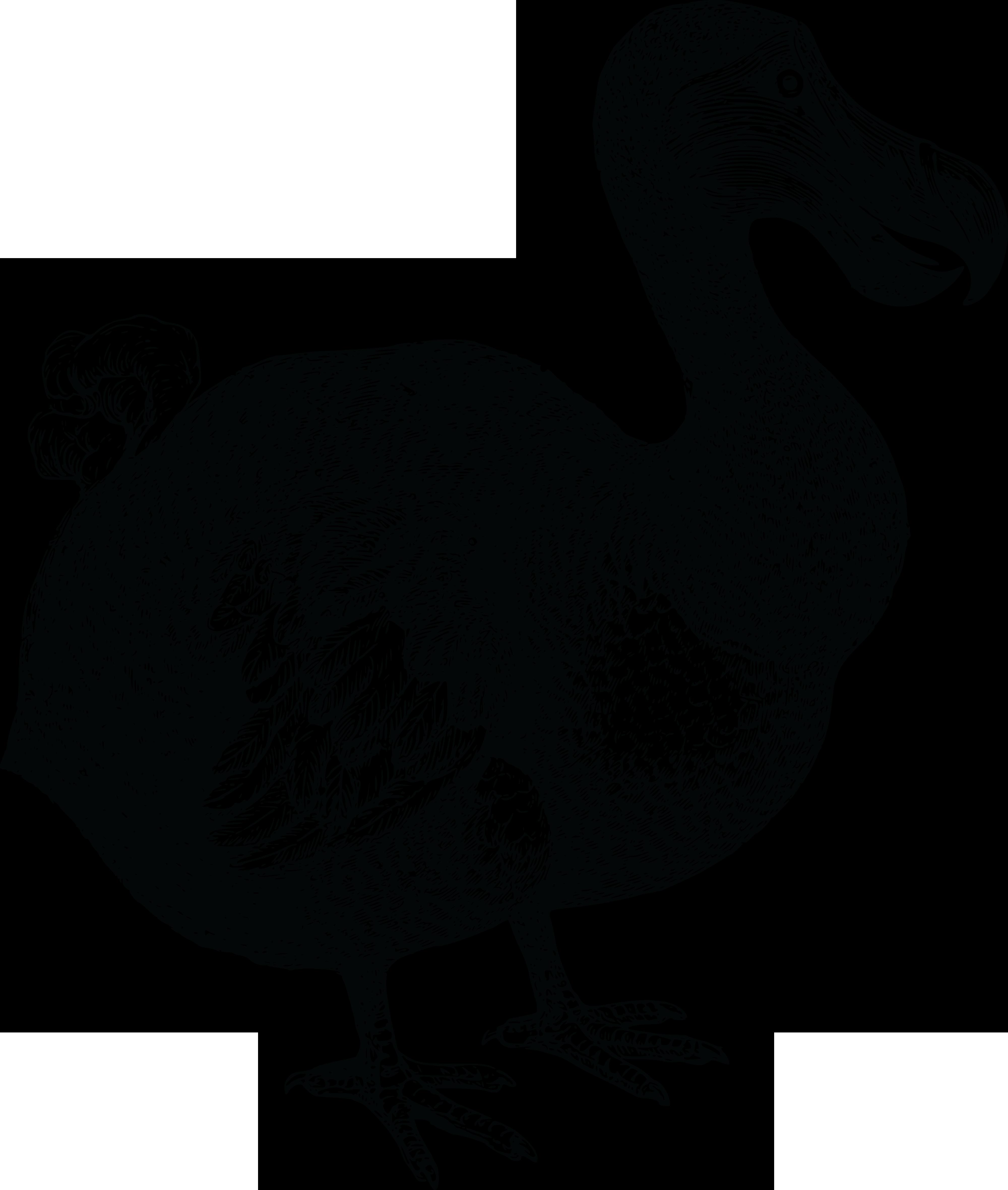 PNG Dodo - 83479