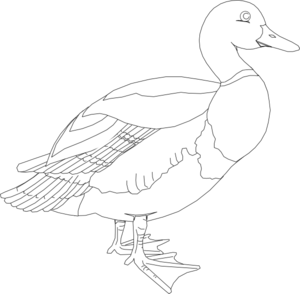 Black And White Duck Clip Art - PNG Duck Black And White