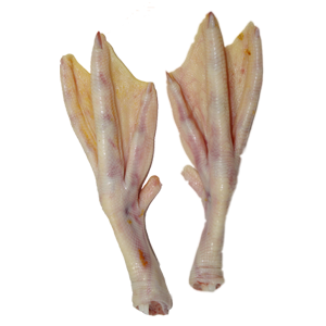 Name: duck feet.png Views: 20
