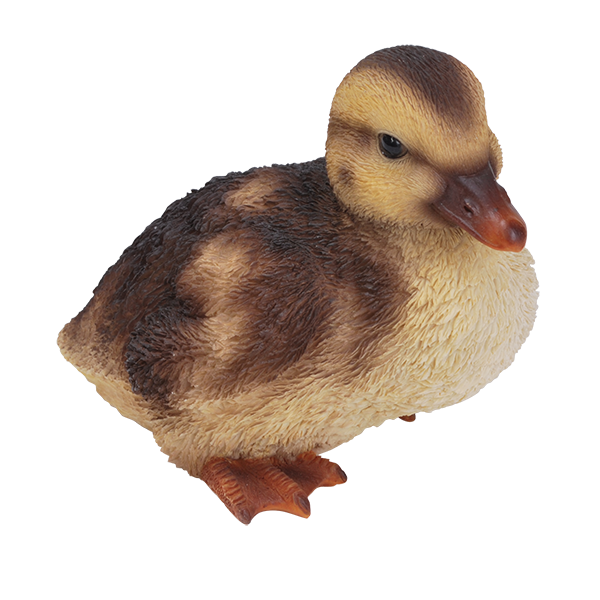 PNG Duckling-PlusPNG.com-600 - PNG Duckling