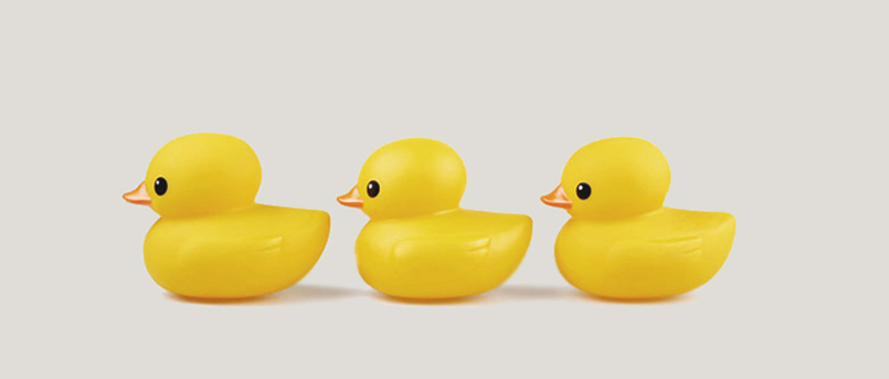 Get Your Ducks In A Row | Publica - PNG Ducks In A Row