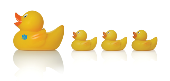 Keys to a successful escrow closing - have your ducks in a row - PNG Ducks In A Row