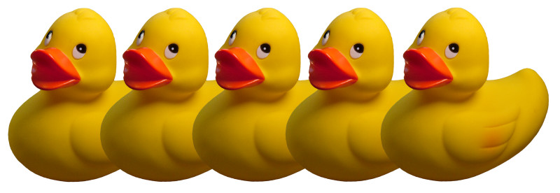 You Need All Your Ducks In A Row To Prove Default Under A Security Agreement - PNG Ducks In A Row