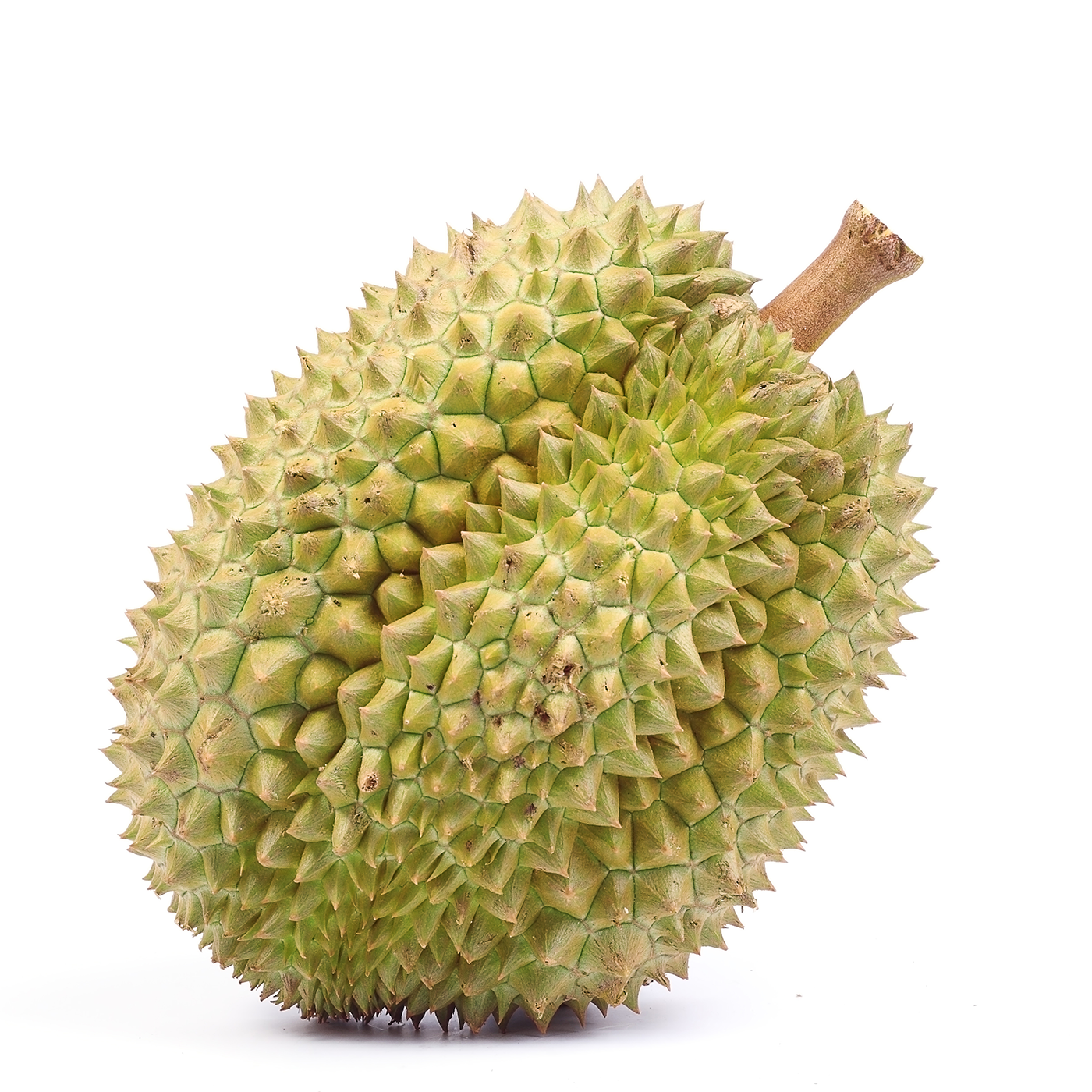 PNG Durian - 135713