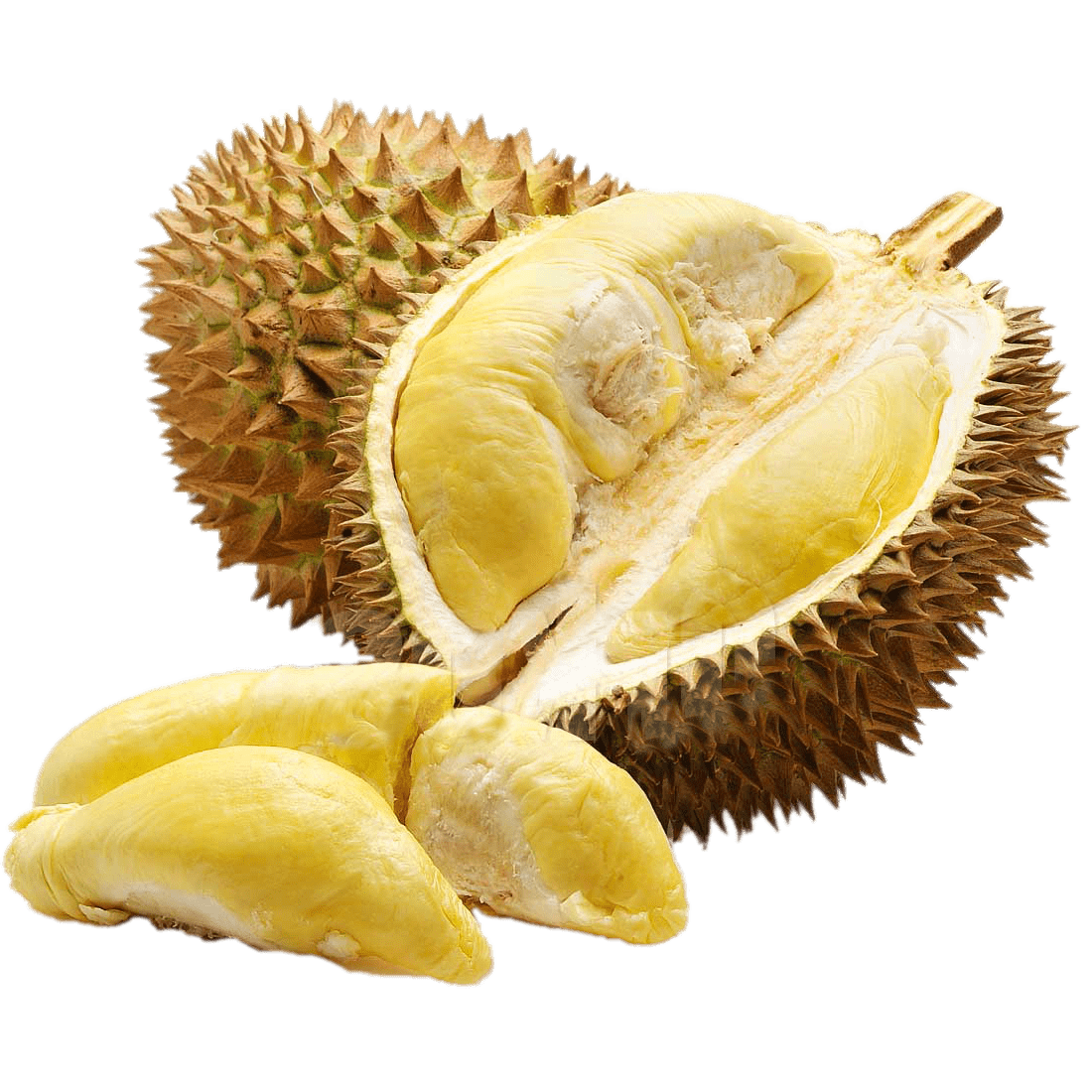 Download - PNG Durian