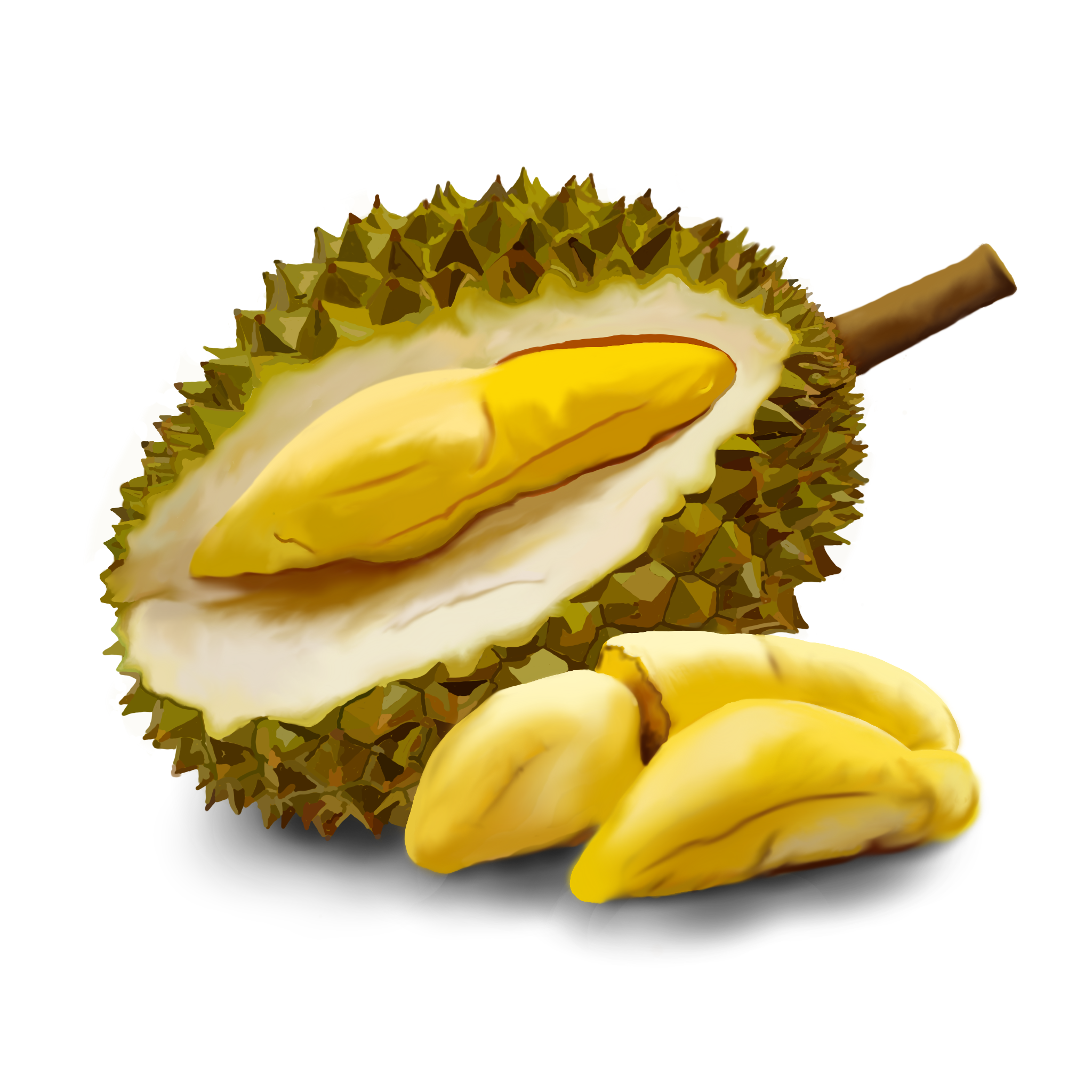 DURIAN - PNG Durian