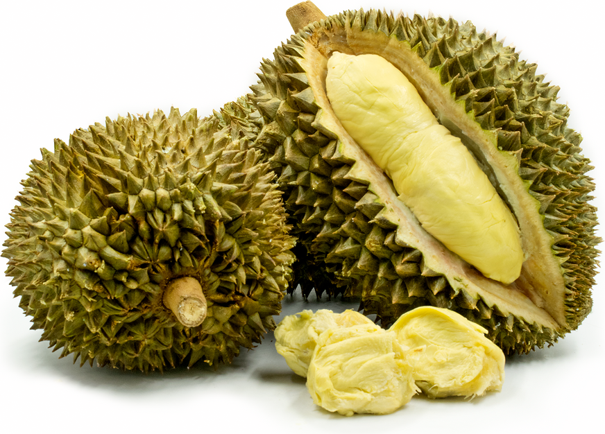 PNG Durian - 135717