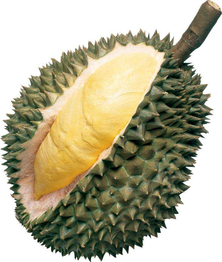 PNG Durian - 135707