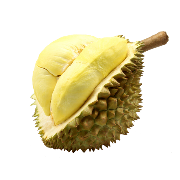 PNG Durian - 135712