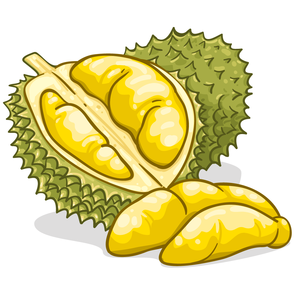 durian.png (1024×1024) - PNG Durian