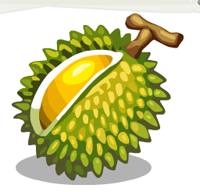 PNG Durian - 135709